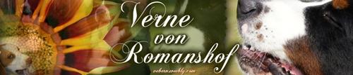 Verne von Romanshof